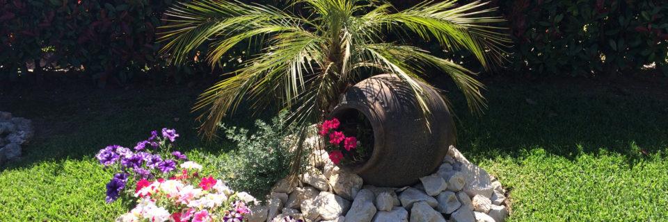 Em floreiras, canteiros ou em zonas relvadas as possibilidades são imensas.